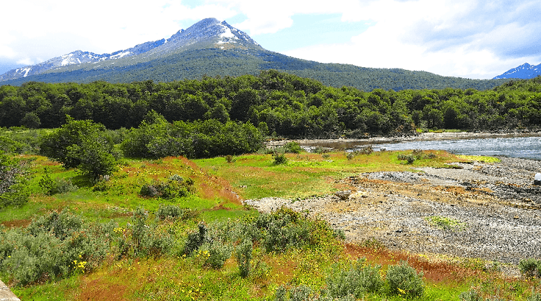 Parque Nacional Tierra del Fuego na Terra do Fogo na Argentina