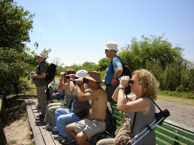 O que fazer na Reserva Ecológica Costanera Sur