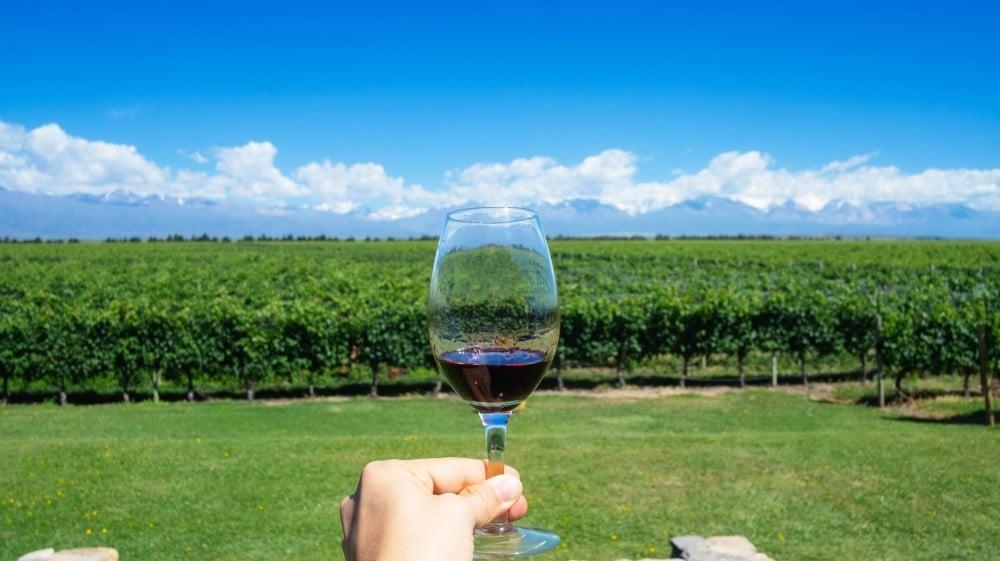 Resultado de imagem para mendoza vinho